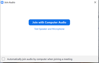 Virtual visits join with computer audio screenshot 2